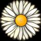 daisy-overlay